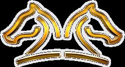 haras-horse-gold